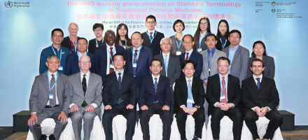 Gruppenfoto der Teilnehmer an der WHO working group on Standard Terminology in Traditional Chinese Medicine